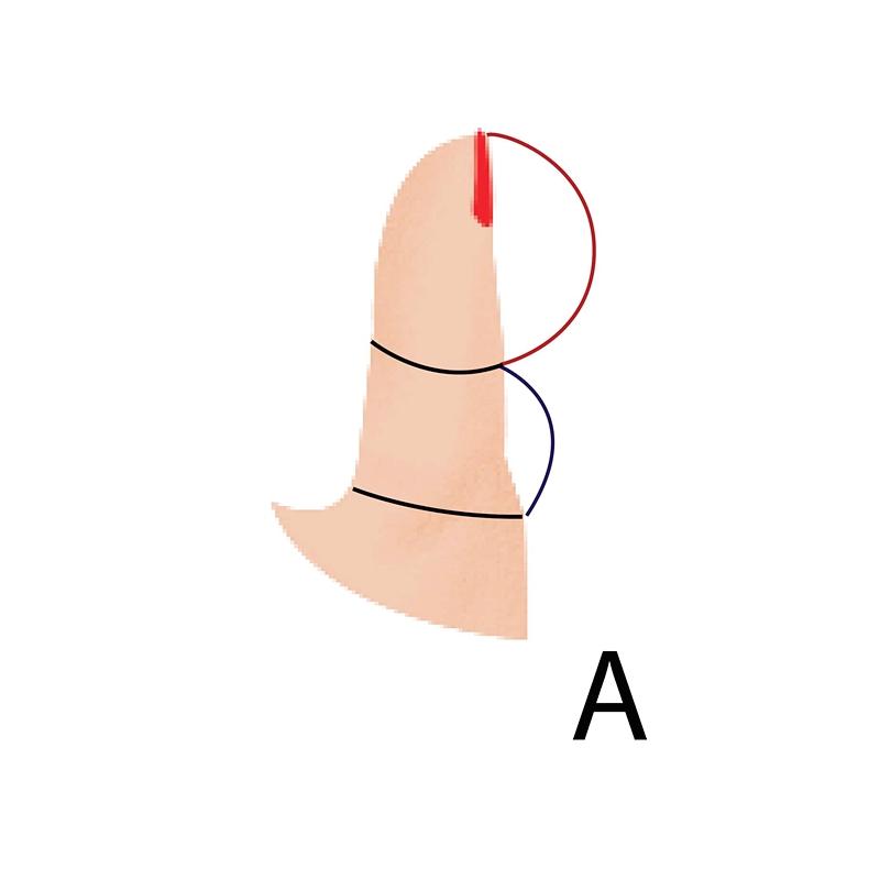 Взгляните на большой палец своей правой руки — он может рассказать о вас всё!