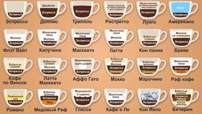 Кофе. Сорта и разновидности любимого напитка