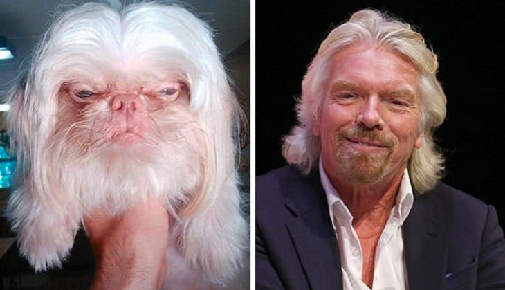 7 забавных фото, на которых звери очень похожи на знаменитостей
